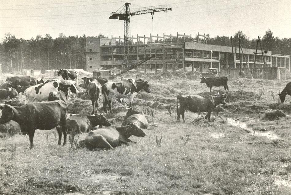 Центральное Конструкторское Бюро (ЦКБ): этап строительства корпусов в советское время