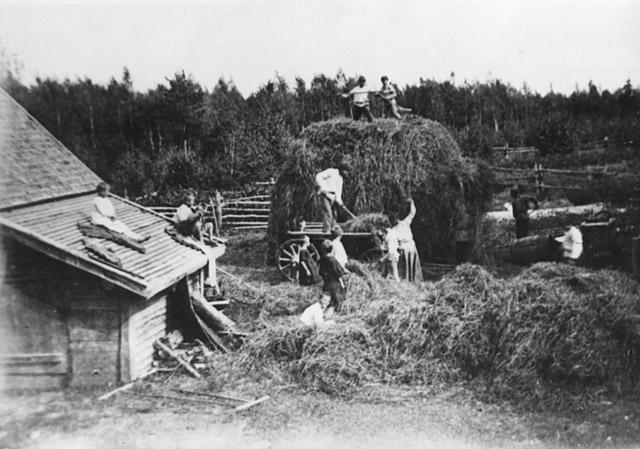Уборка сена в колонии «Бодрая жизнь» в 1925 году
