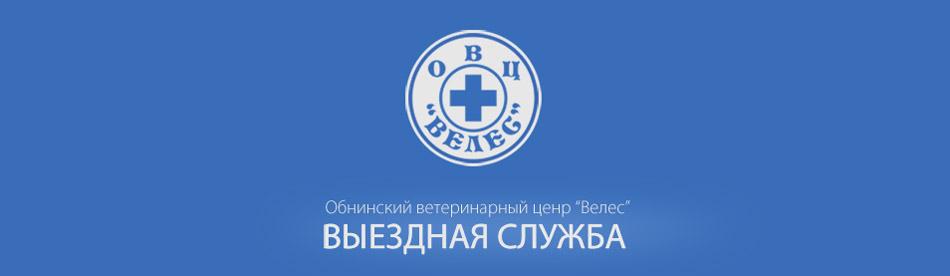 Ветеринарная клиника «Велес» в городе Обнинске