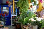 Студия флористики «Дежавю» в городе Обнинске