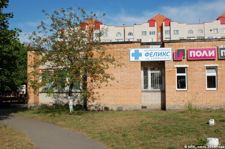 Реклама ветеринарной клиники «Феликс» на стене здания в городе Обнинске