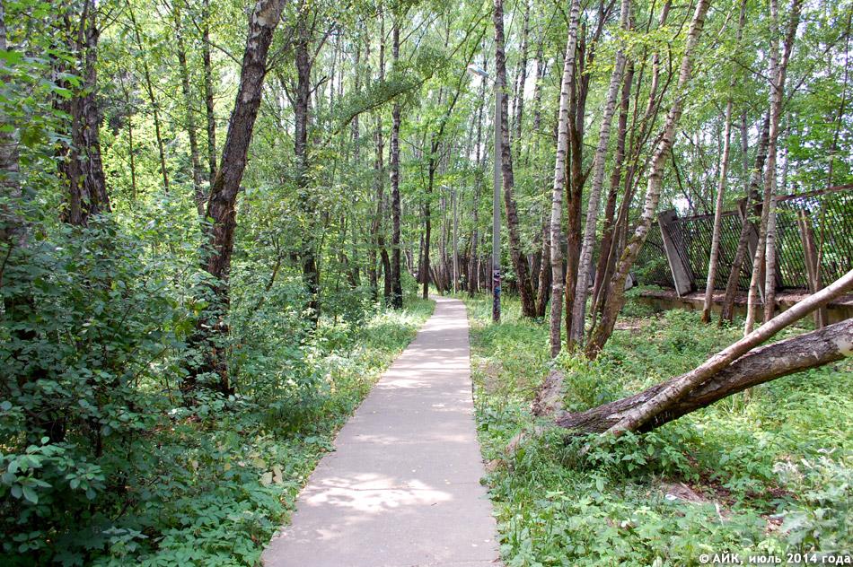 Гурьяновский лес в городе Обнинске