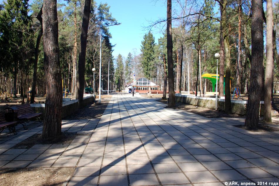 Парк в городе Обнинске: центральная аллея