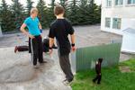 Паркур (трейсеры) в городе Обнинске