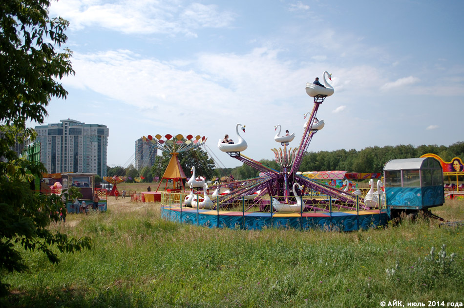 Цирк у дуба на поляне перед «Домом Учёных» в городе Обнинске